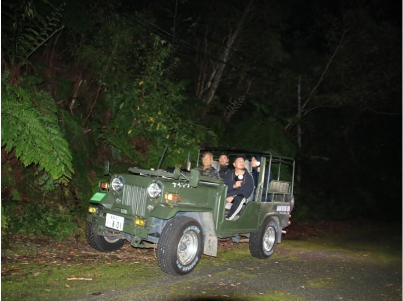 奄美の夜のジャングルを駆け抜ける!4WDナイトツアー(No.1)
