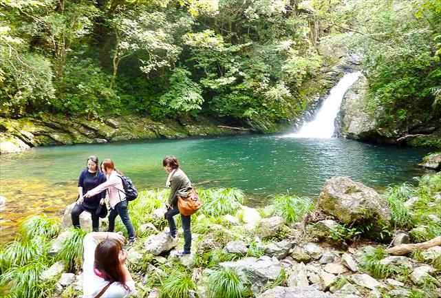 【地域共通クーポン対象】しっかりジャングル満喫!マテリアの滝&マングローブカヌー1日ツアー(No.6)