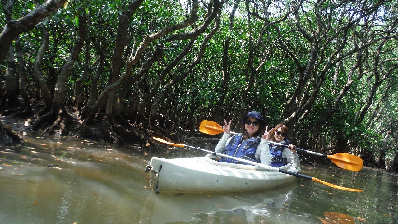 日本最大級のマングローブカヌー体験