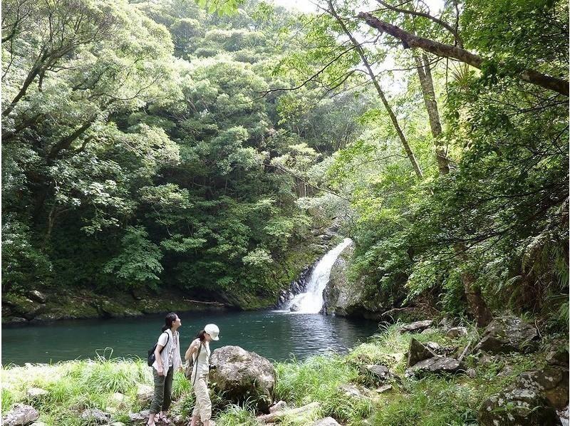 奄美人気のマテリアの滝を散策