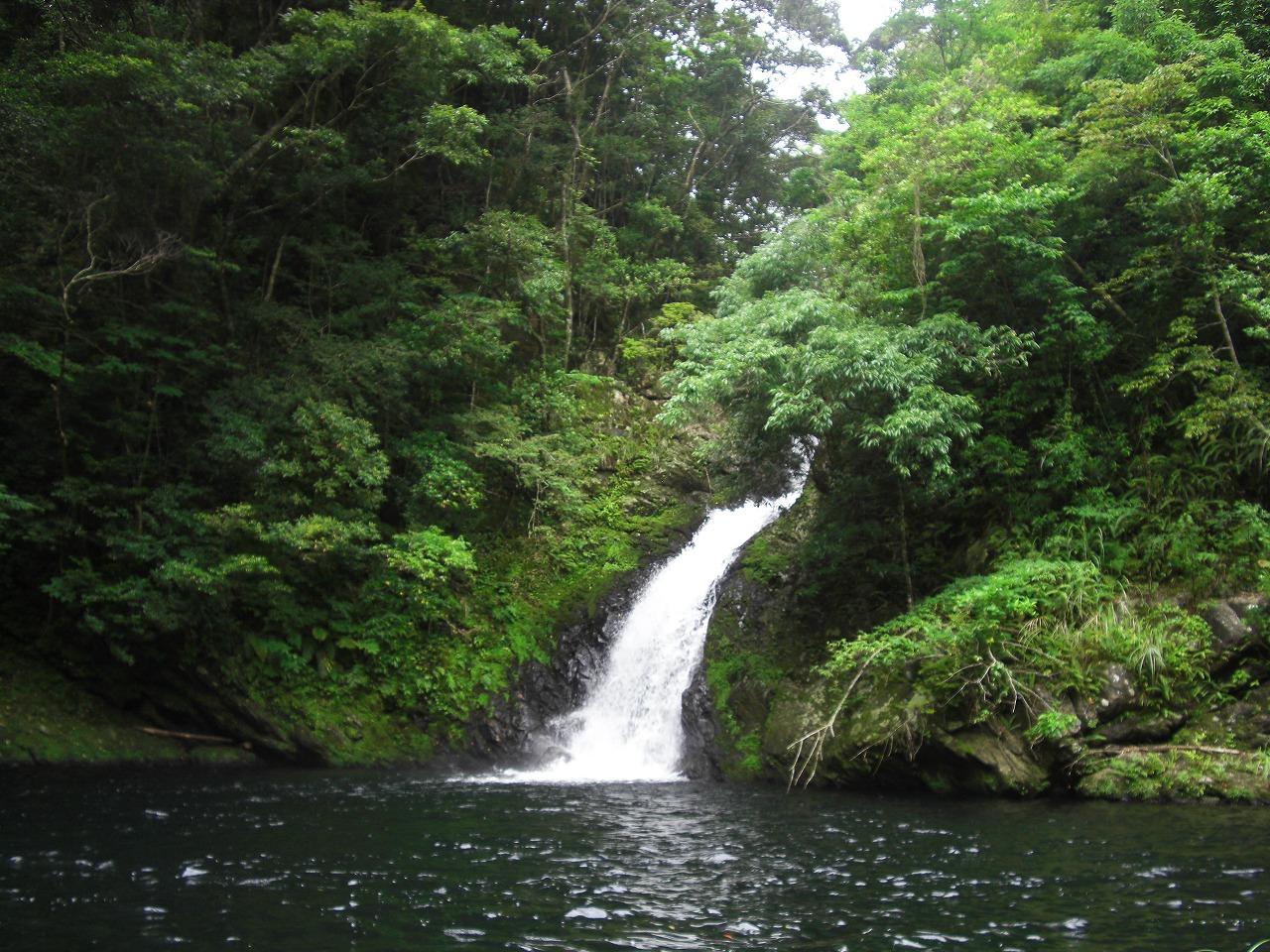 亜熱帯の滝&湯湾岳!パワースポット散策1日ツアー(No.29)