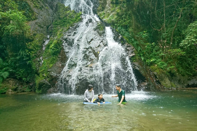 奄美の大自然を五感で感じる♪亜熱帯の森&滝遊び半日ツアー(No.22)