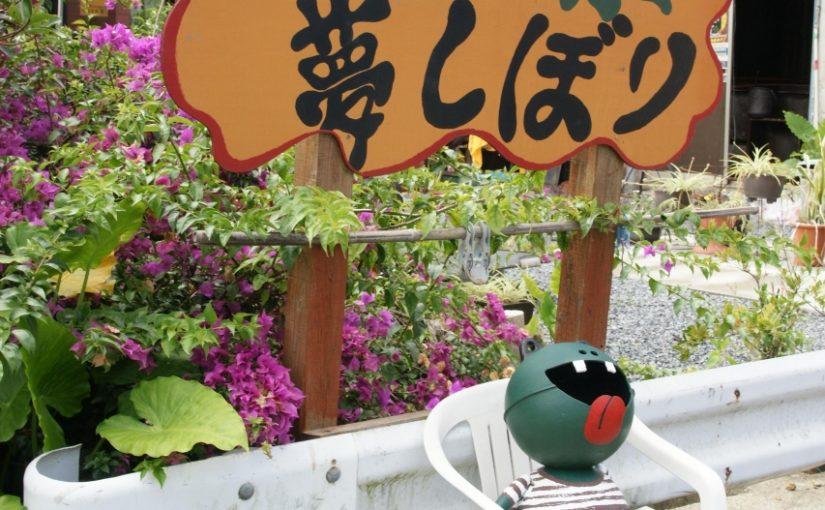 奄美大島の肥後染色 夢しぼり
