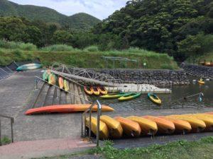 奄美大島の黒潮の森マングローブパーク