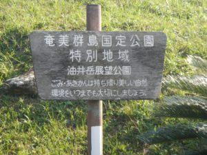油井岳展望台